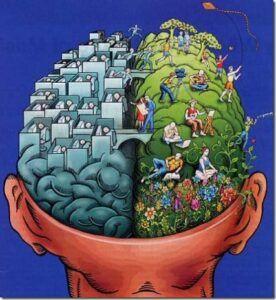hemisferis